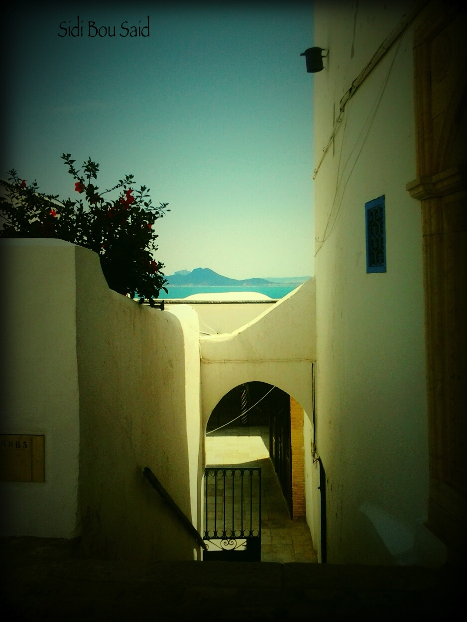 Sidi Bou Said, un pueblo pesquero al norte de Túnez